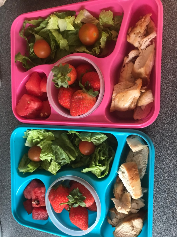 Healthy lunch boxes prepared